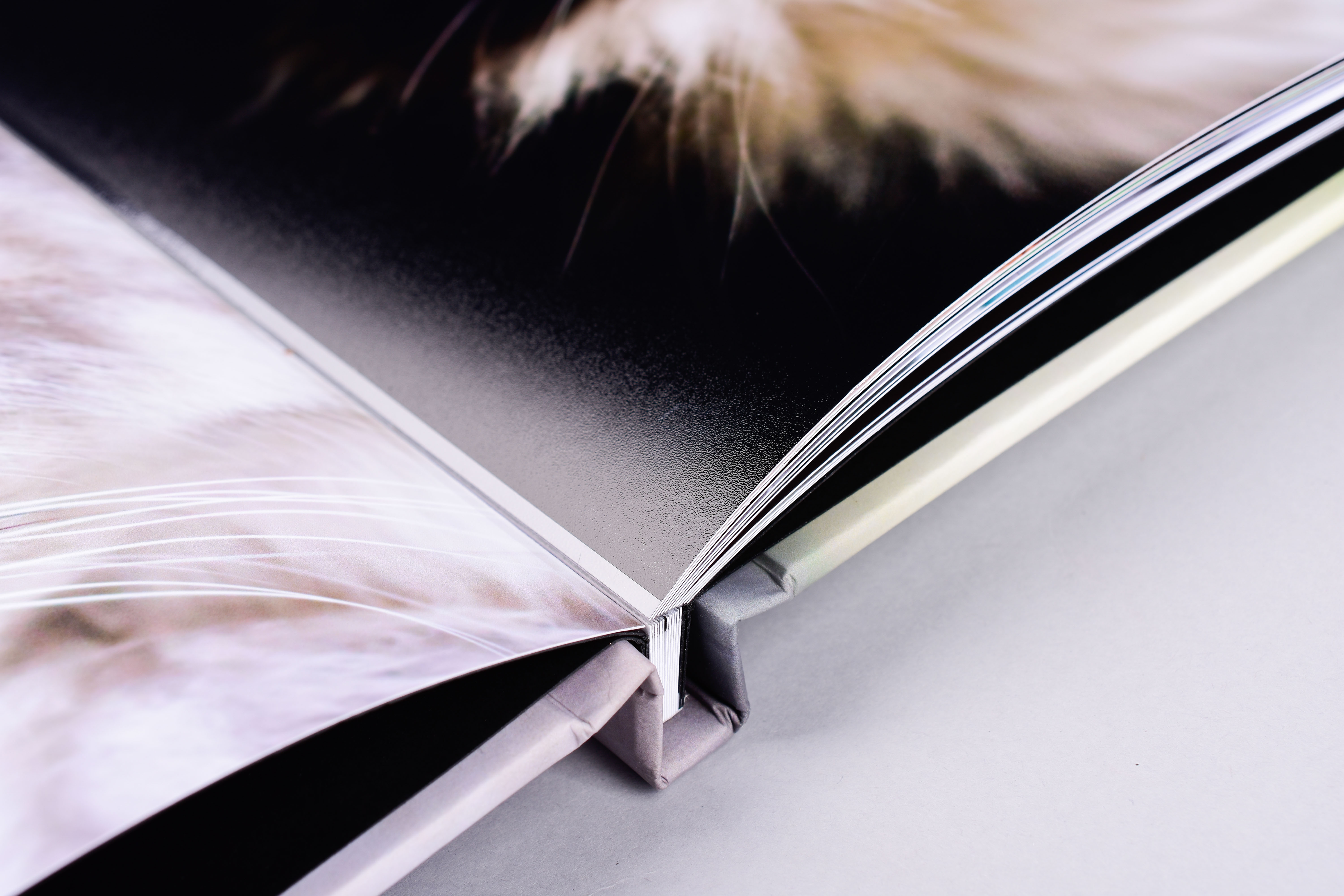 The Difference Between Our Paper Options: Dreambook 4K Edition