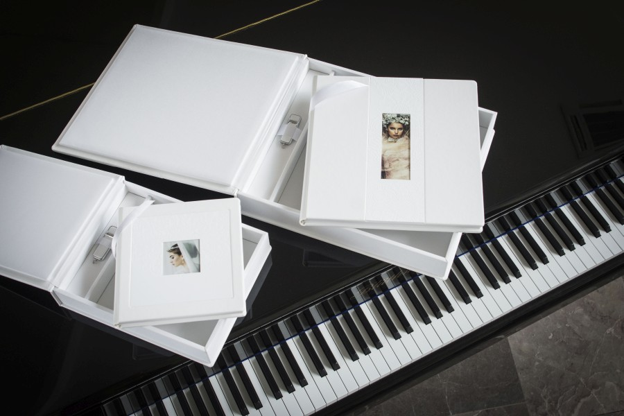 Professional Wedding album with USB