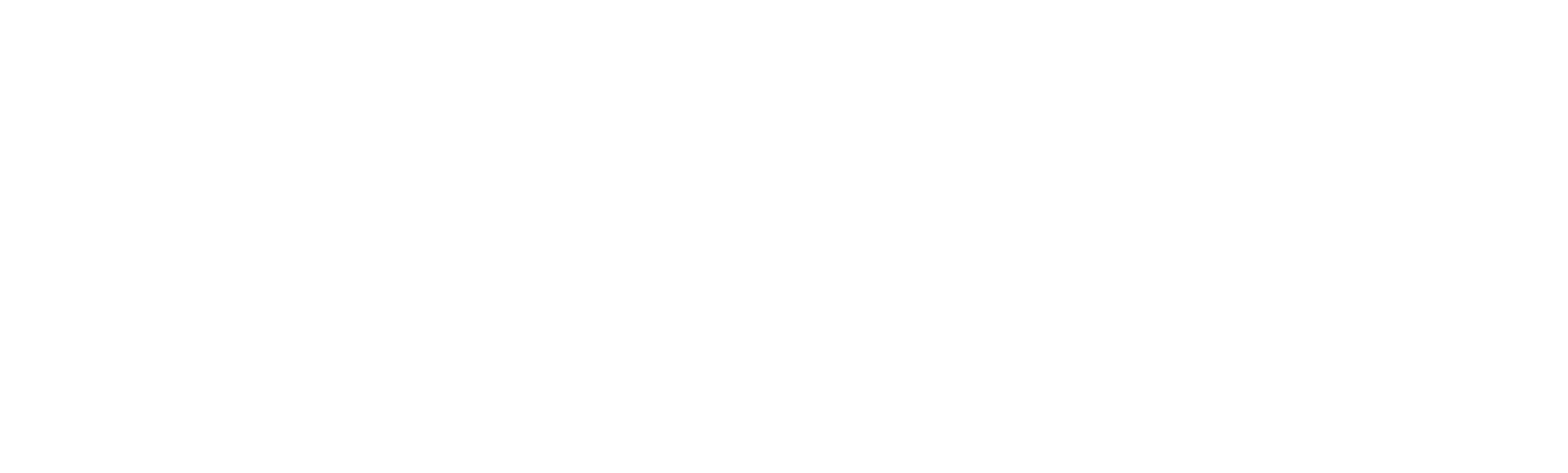 logo_nphoto.png