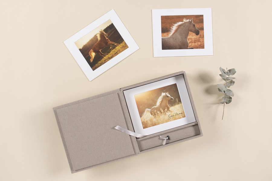Passepartout Box Pferdefotografie