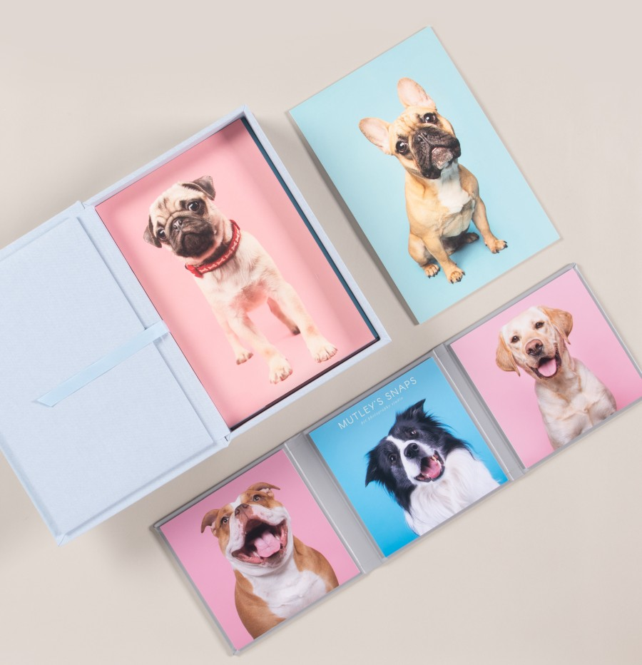 Pet Photography - Folio Box with Board Mounted Prints - Artwork by Mutleys Snaps