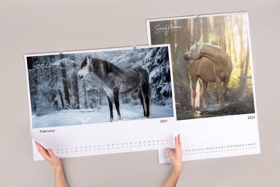 Pet Photography - Photo Calendar - Artwork by Sabrina Mischnik