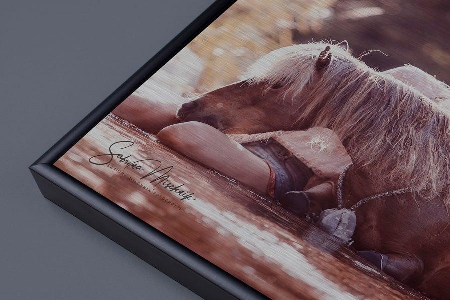 pferd ausgepowert wanddeko