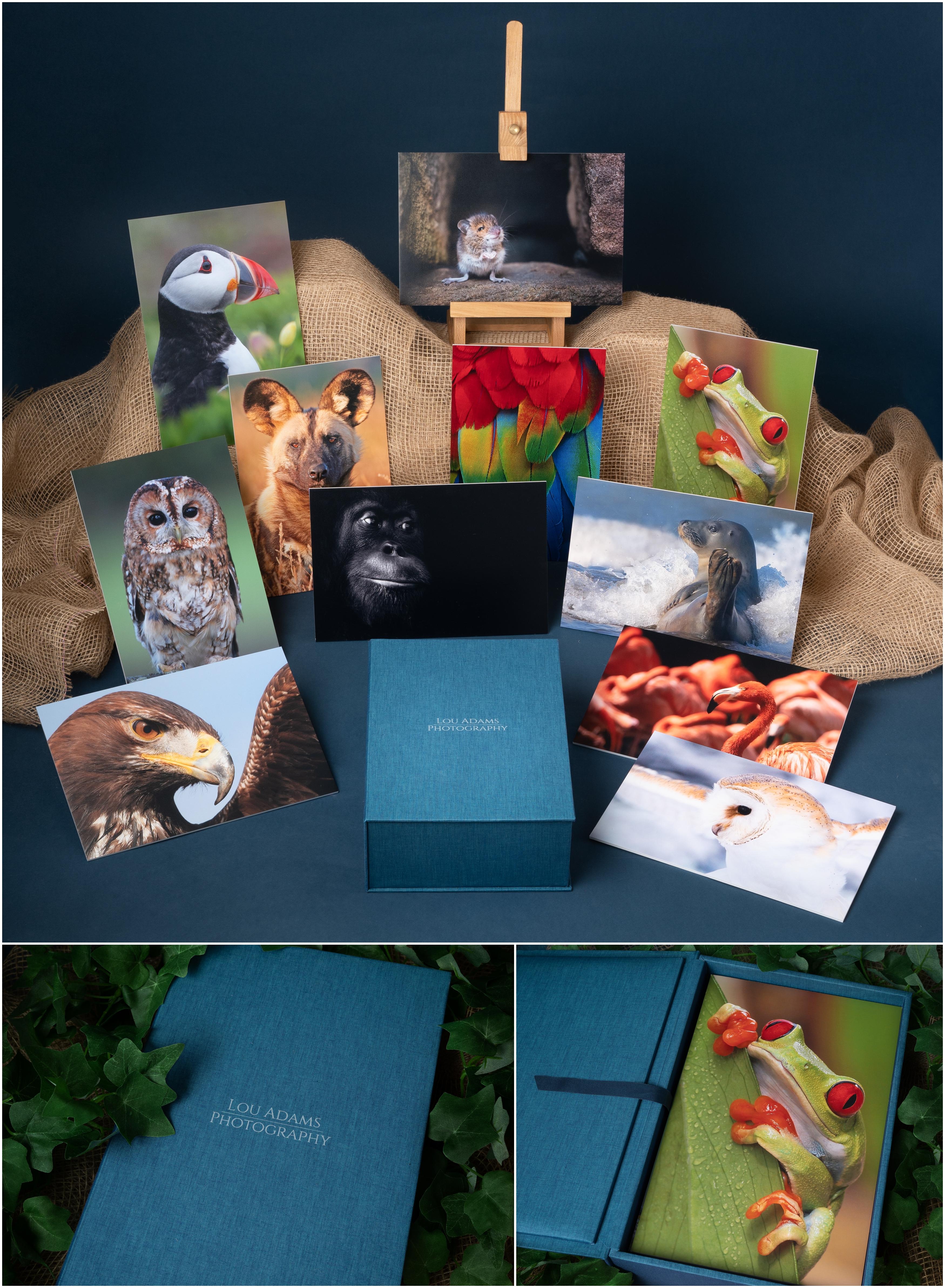 nPhoto Folio Box Lou Adams Photography