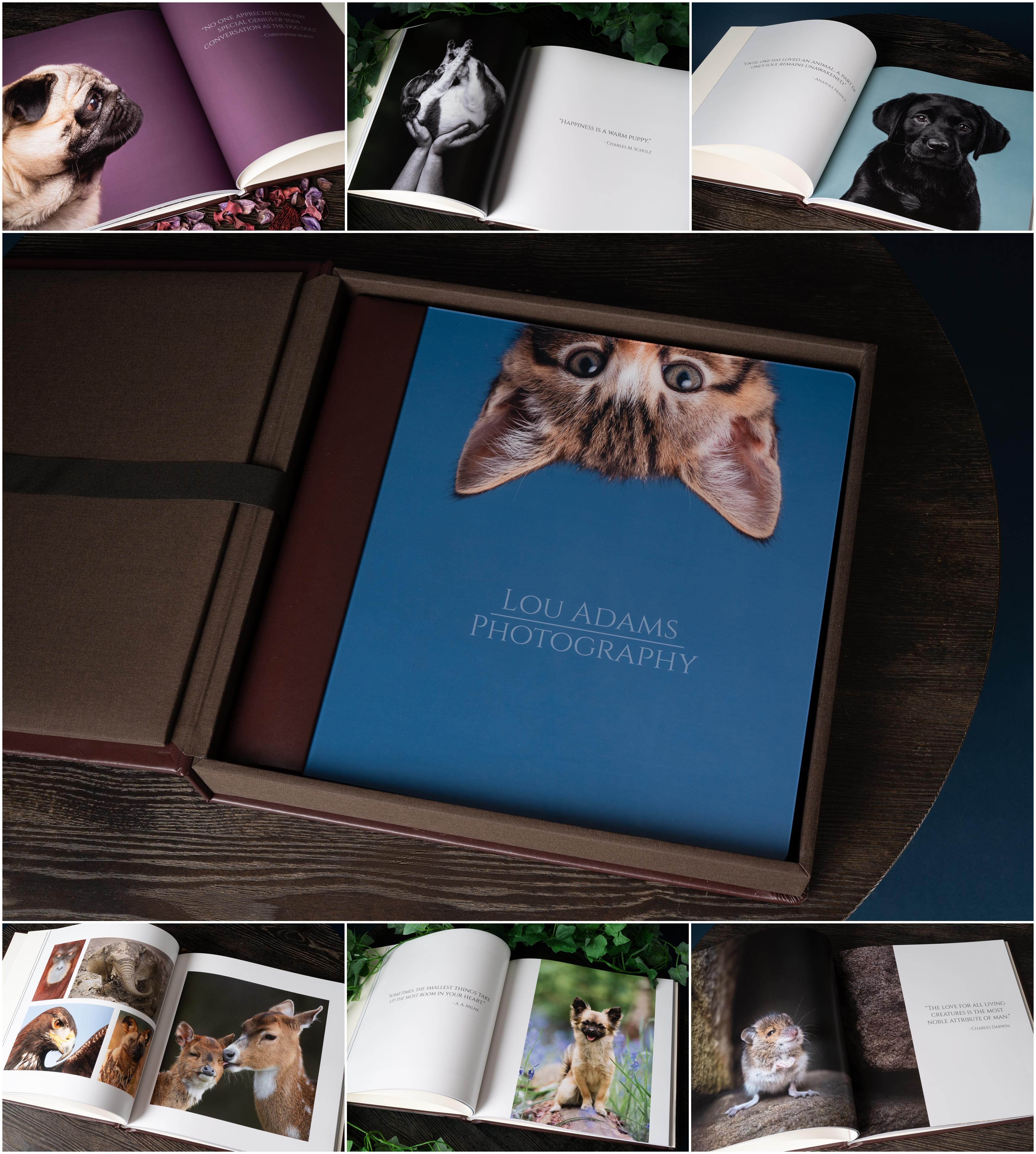 nPhoto Complete Album Lou Adams Photography