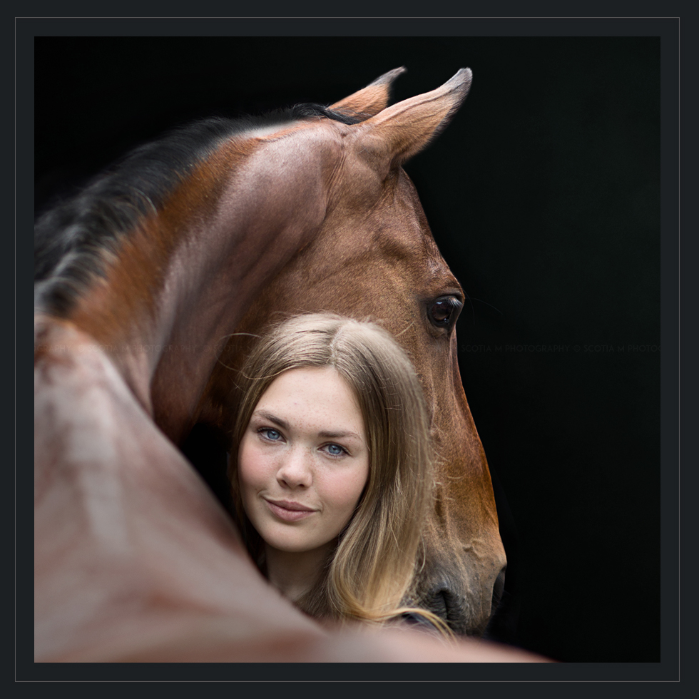 Professional Equine Photo taken by Scotia M Photography