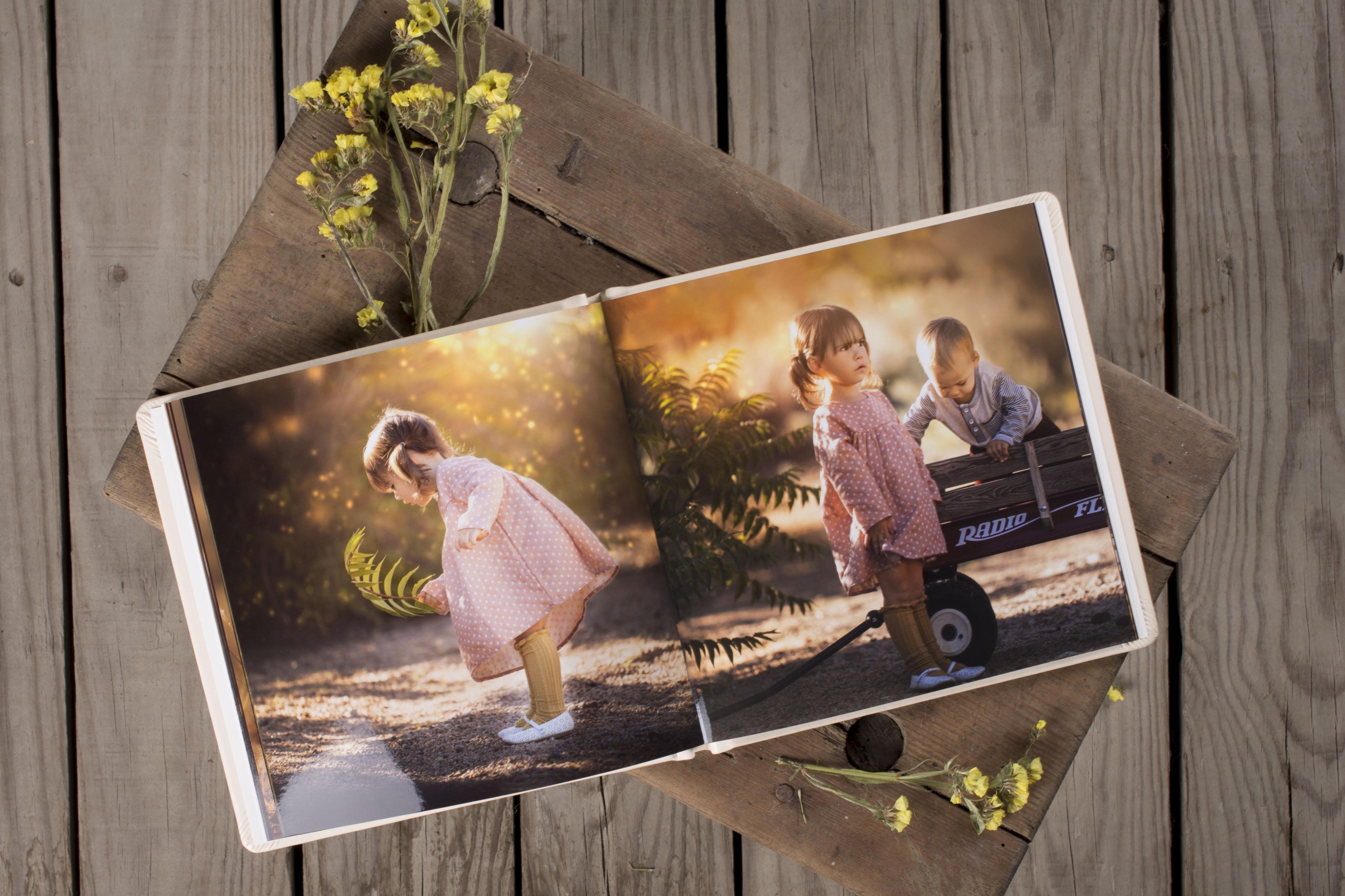 Dream Book Acrylic F3 AP9 Lory Marie_3