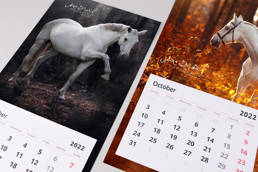 EQUINE_Calendar_HD (2)