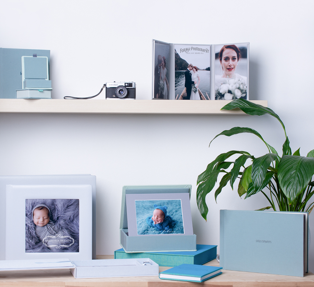 professional photography studio set-up