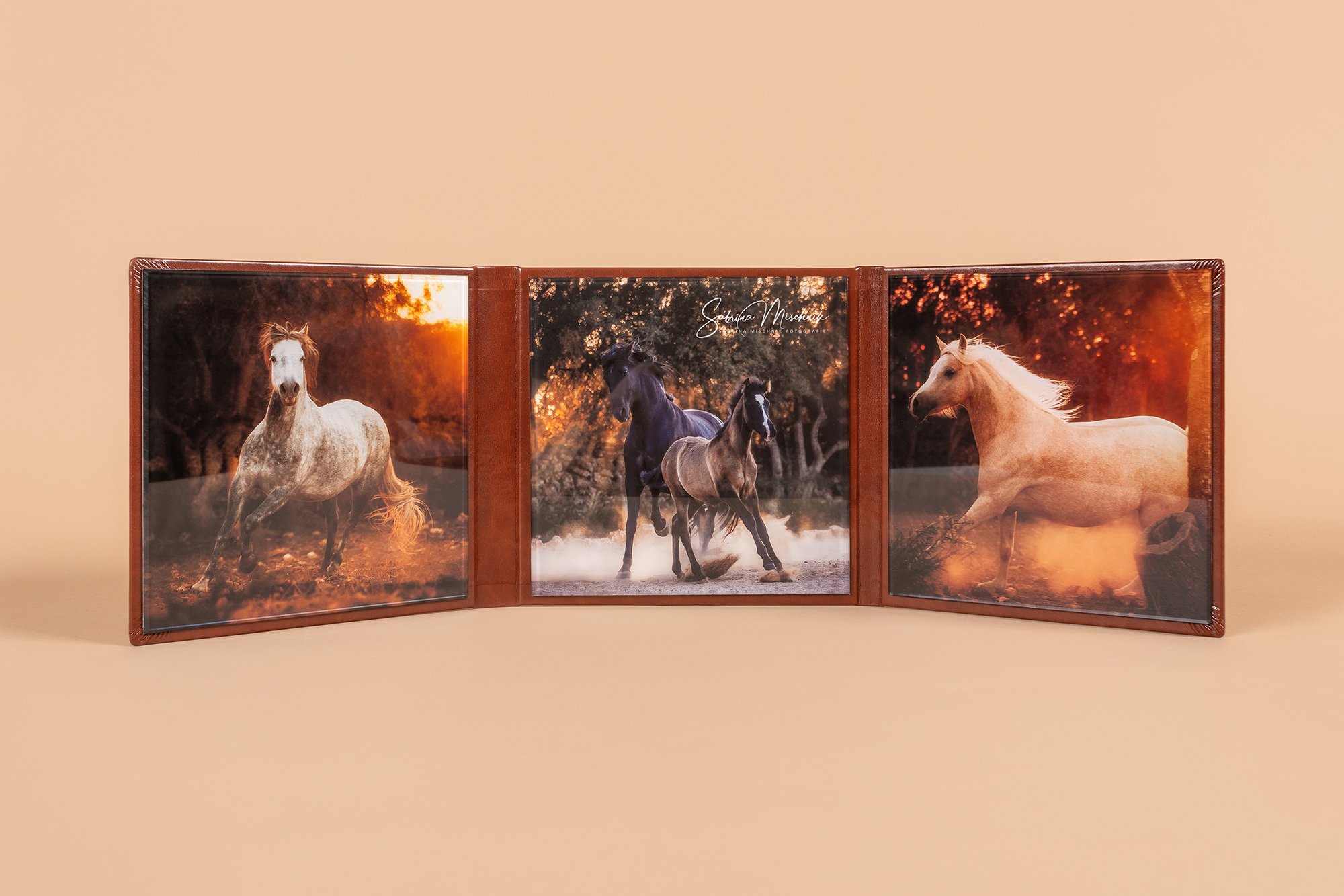 equine photography acrylic trifold