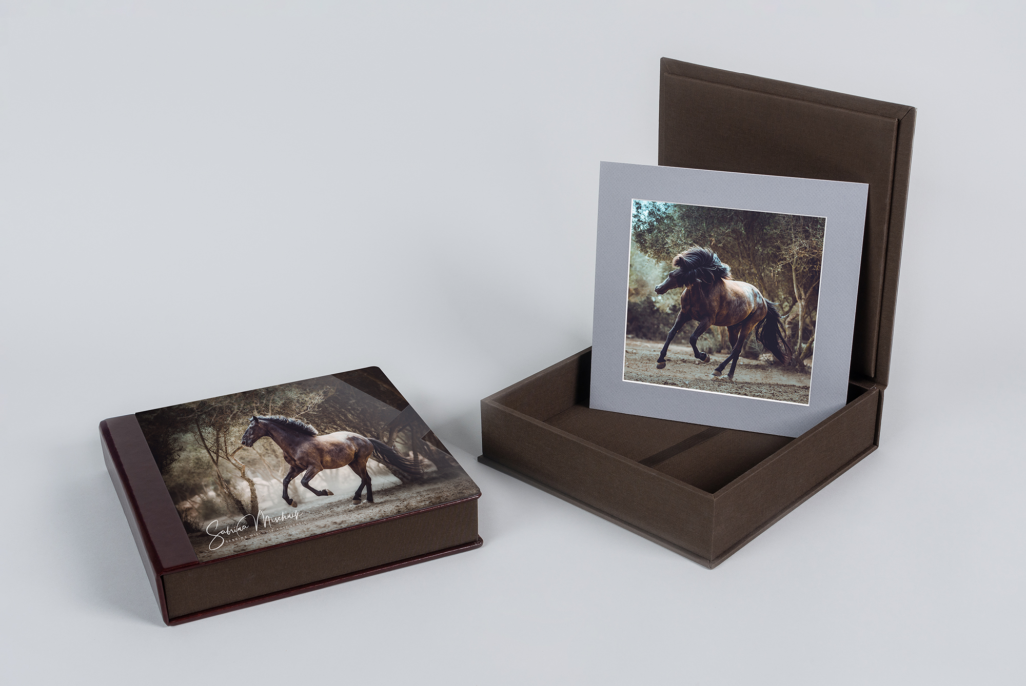 folio boxes for pet photographers