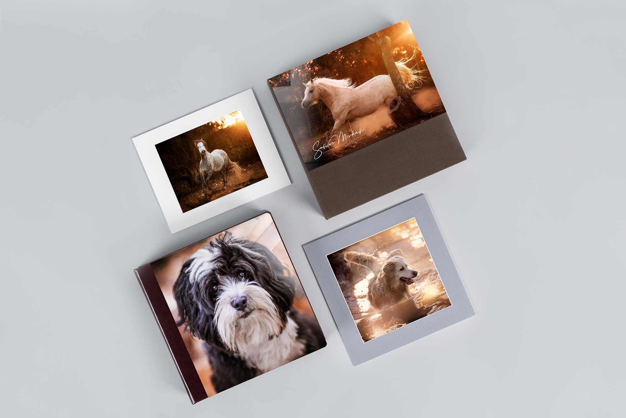 acrylic print products for equine photography and dog photography