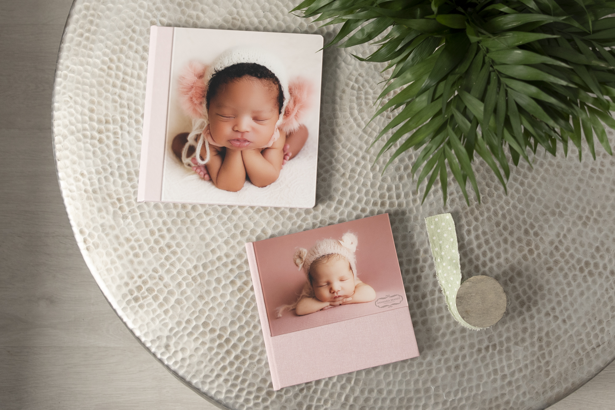 Professional Acrylic Albums for Newborn Photography