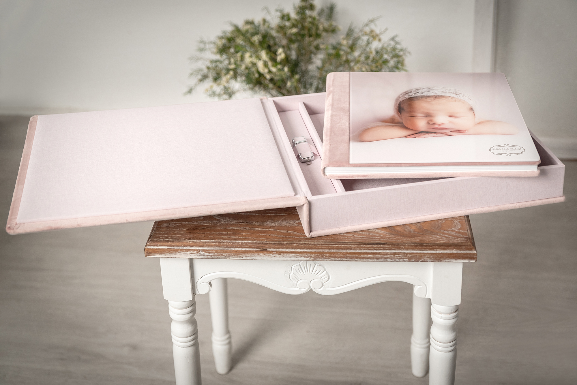 Large acrylic photo album for professional photographers