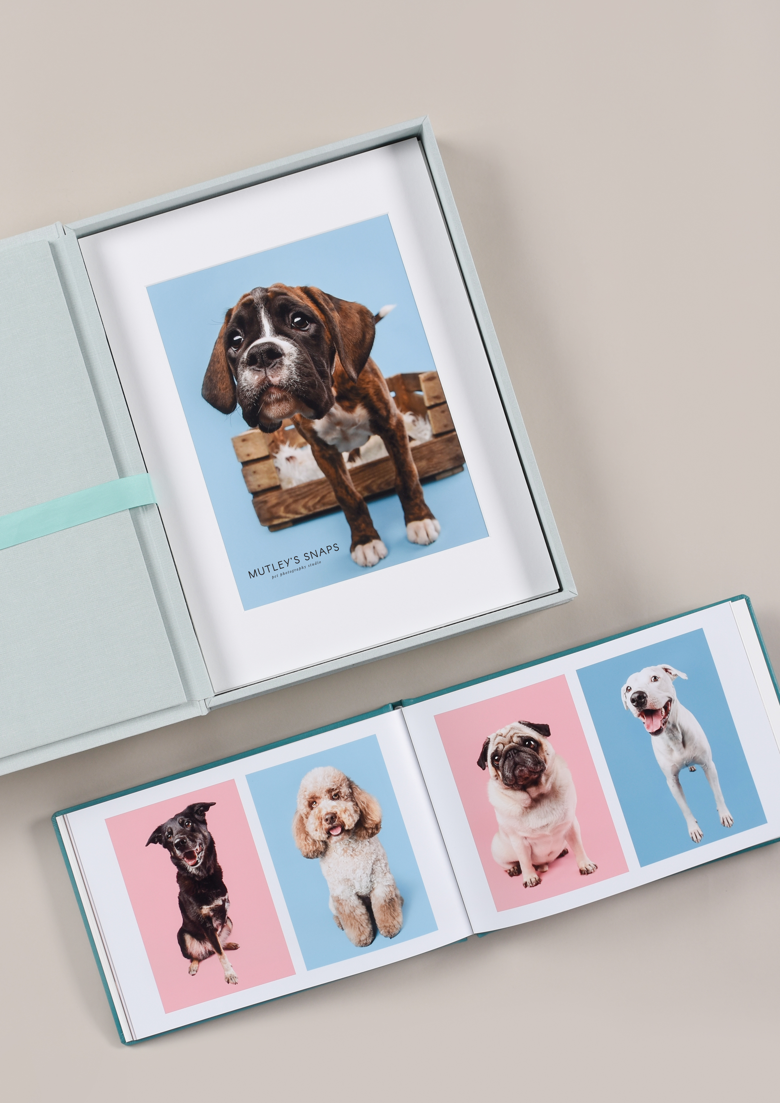 boxed prints with dogs for pet photographers